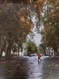 11_Maróti-Dorka_Eső-után